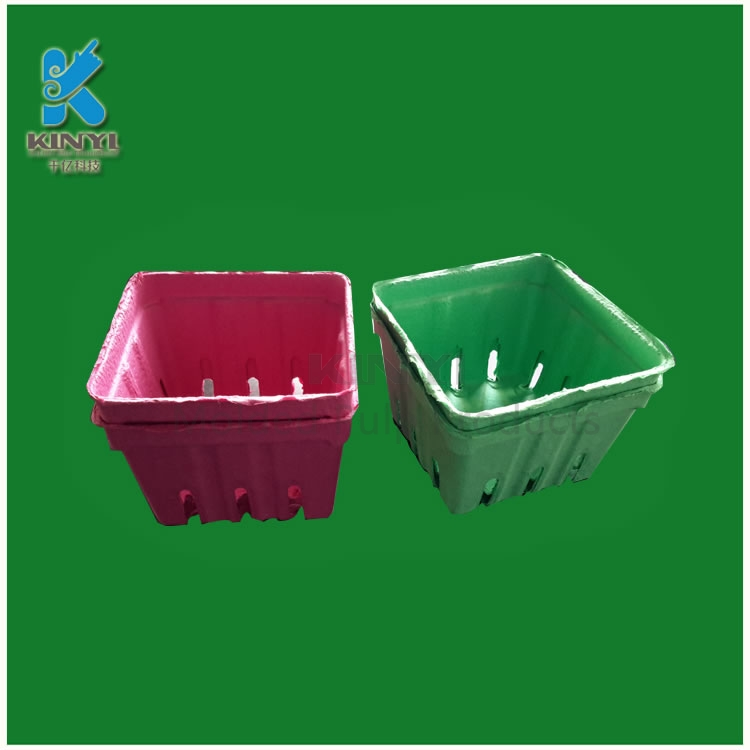 Biodegradable Paper Pulp Fruit Packaging Trays