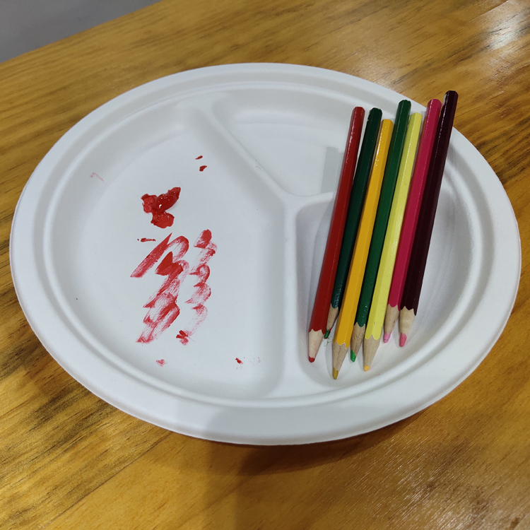 Biodegradable Molded Pulp Paper Paint Drawing Palette